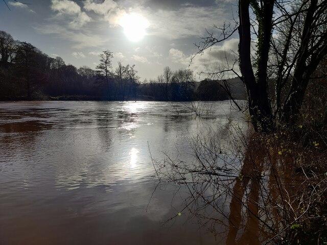 River Severn near Ribbesford