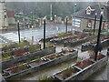 ST6568 : Planter terraces by Neil Owen