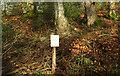 SX8078 : Closed path, Parke by Derek Harper