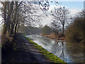 SP6889 : Grand Union Canal, near Foxton by Stephen McKay