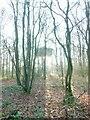 TQ2797 : Water Tower at Trent Park Enfield North London by John Kingdon