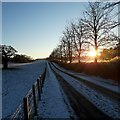 NS7253 : Winter sunset, Hamilton High Parks by Alan O'Dowd