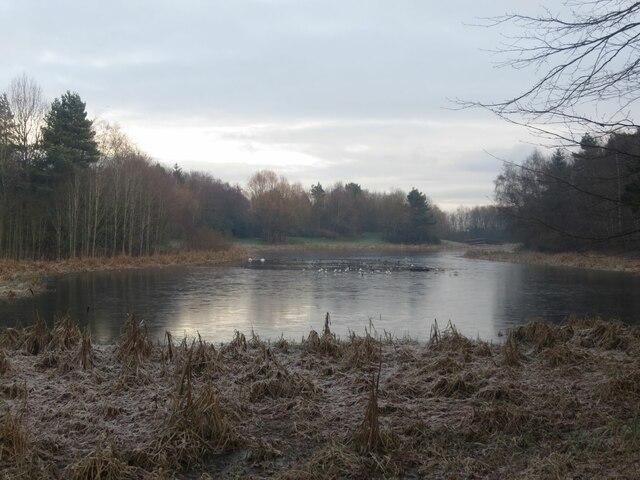 Stenton Pond from the west, Thornton