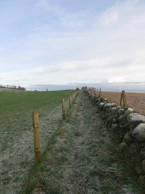 Pilgrim Way near Finmont Farm, Kinglassie
