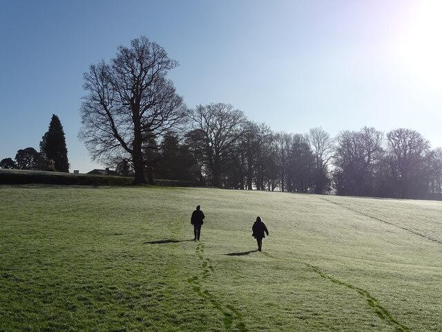 Walkers in frosty field