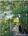TQ3715 : Foot Bridge for Path in East Chiltington by PAUL FARMER