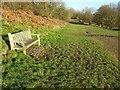 SO7744 : Seat on Malvern Common by Philip Halling