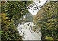 SH7657 : Swallow Falls by PAUL FARMER