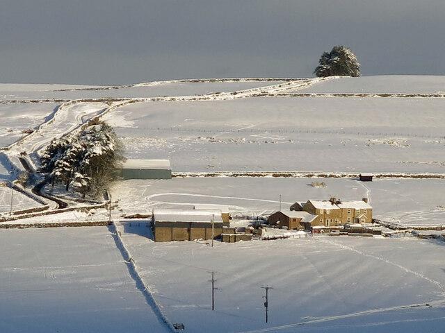 Snowy pastures around Moorhouse Gate