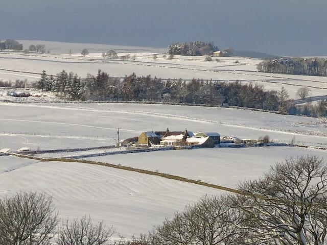 Snowy pastures around High Broadwood Hall