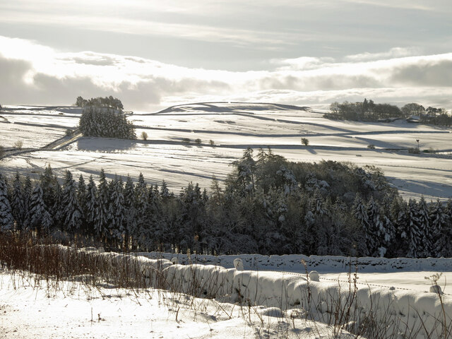 The valley of Parkgates Burn in the snow