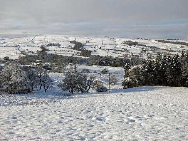 East Allen Dale below Parkgates in the snow