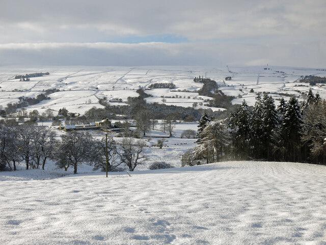 East Allen Dale below Parkgates in the snow (2)
