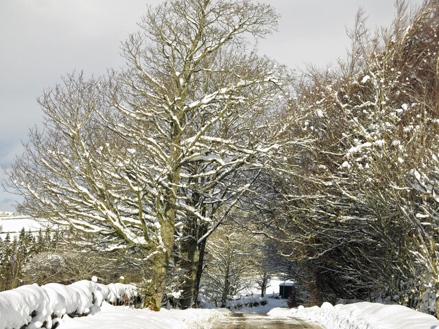 The minor road between Allendale and Sinderhope in the snow