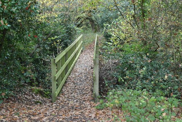 Footbridge across small stream by N Chadwick