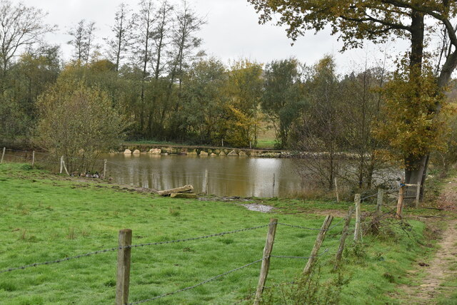 A new(ish) pond by N Chadwick