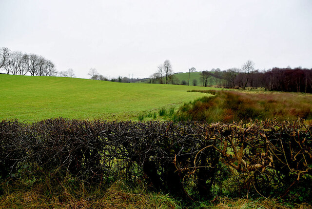 Ranelly Townland