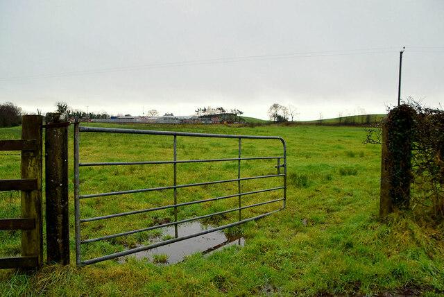 An open field, Ranelly