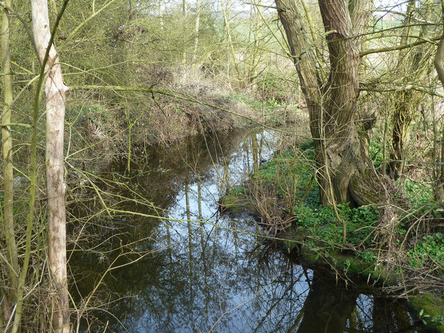 Sandon Brook