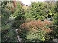 SP4416 : Hensington House Memorial Garden by Jonathan Hutchins