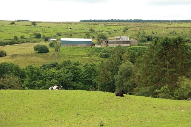 Farmland at Holen House