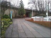 NS5574 : Path beside Gavin's Mill by Richard Sutcliffe