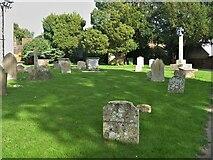 TL7835 : Castle Hedingham features [4] by Michael Dibb