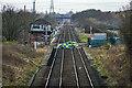 NZ4926 : Greatham Station, Crossing and Signal Box by Roger Muggleton
