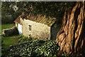 SX8260 : Barn, Berry Pomeroy by Derek Harper