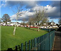 ST3091 : Deciduous trees in school grounds, Malpas, Newport by Jaggery