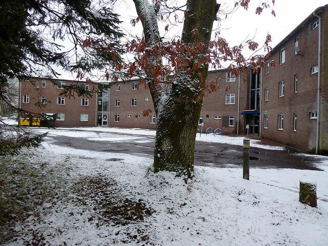 Snow, Tyrone & Fermanagh Hospital grounds