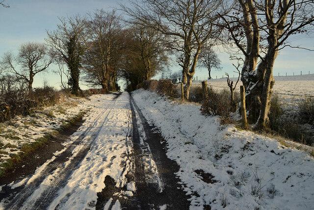 Snow along Drudgeon Road