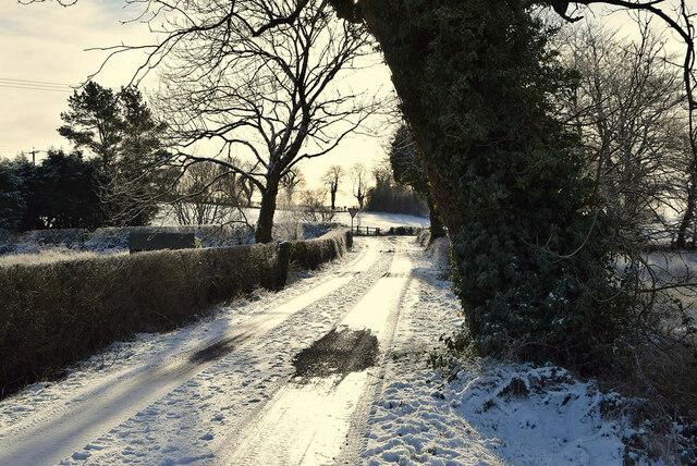 Whitehill Road