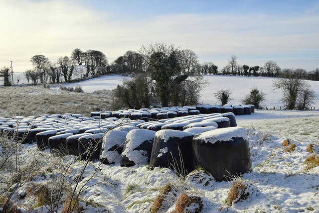 Snow covered bales, Creevangar