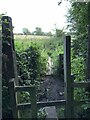 SJ8051 : Stile and footbridge on public footpath by Jonathan Hutchins
