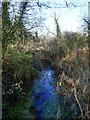 TG3227 : Southwest from bridge over Drain by David Pashley