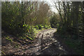 SX8458 : Track, Aish by Derek Harper