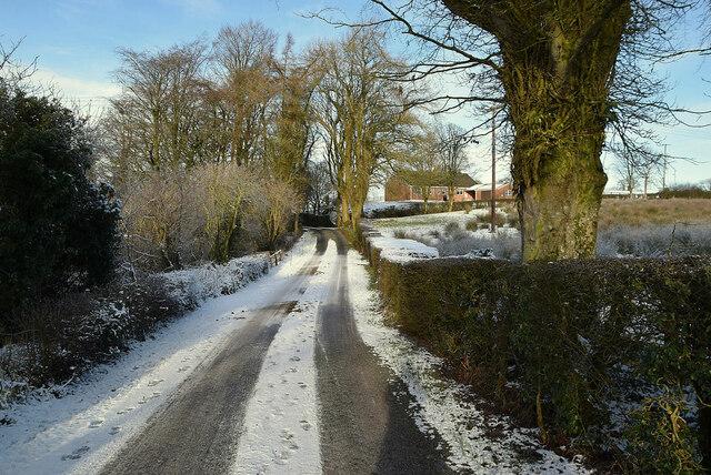 Whitehill Road, Creevangar