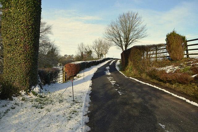 Snow along Whitehill Road