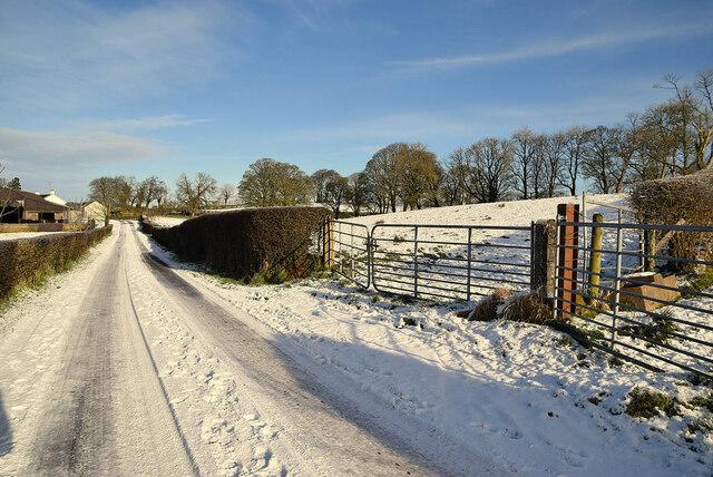 Snow, Whitehill Road