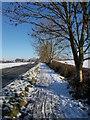 TF1605 : St. Pega's Road, Peakirk, in the snow by Paul Bryan
