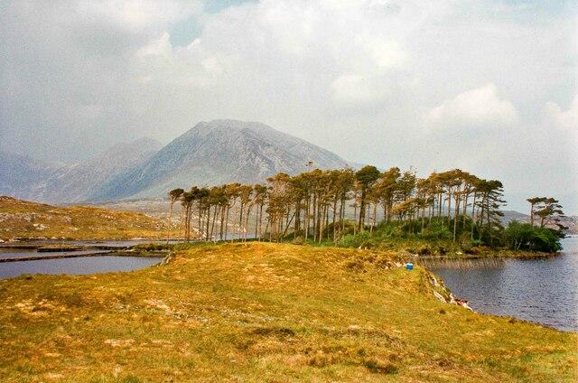 Connemara View - May 1994
