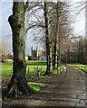 TL4458 : King's College: winter sunlight by John Sutton