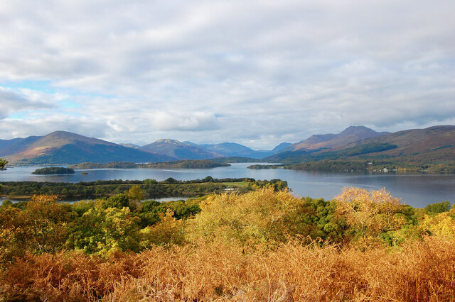 The vista from the summit of Inchcailloch island, Loch Lomond