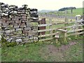 NY7205 : Stile in old gateway by Adrian Taylor