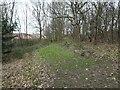 SE3322 : Woodland Walk waymark, Fieldhead Hospital grounds by Christine Johnstone