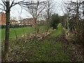 SE3322 : Woodland walk alongside Hatfeild View by Christine Johnstone