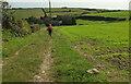 SX8750 : Footpath from Swannaton by Derek Harper