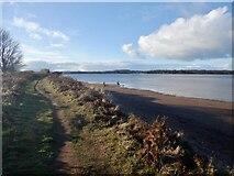NT6378 : Coast path, Hedderwick by Richard Webb