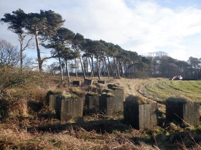 Anti tank blocks, Hedderwick